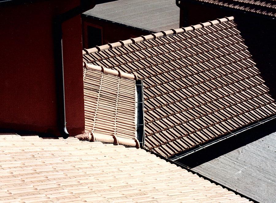 scaccia piccioni tetti rimedi professionali e fai da te