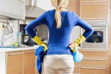 Disinfestazione roditori - Come uccidere i topi in casa ...